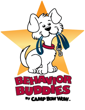 Certified Dog Trainer Profile: Danielle R Cavanaugh ...